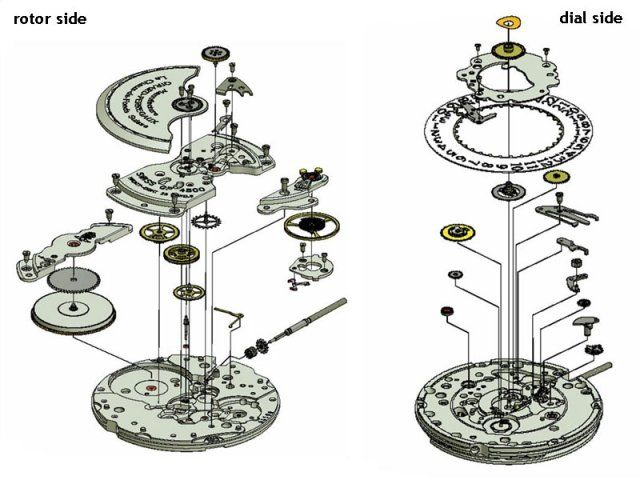 rolex watch drawings - Google Search | Drafting ...