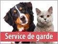 ANI-CRECHE, garderie,  bien-être du chien