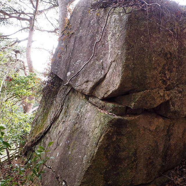 【naohikotokuhira】さんのInstagramをピンしています。 《昨夏発見した磐座。城壁岩と命名した。オリオン座配置の三つ星の位置にある。#landscape #photography  #photo  #photographer  #風景 #ファインダー越しの私の世界  #写真  #OLYMPUS #オリンパス #japanese #japan #landscape  #color  #kobe #神戸  #forest #森 #六甲山  #遺跡 #mtrokko #巨石 #山  #磐座 #travel  #trip》