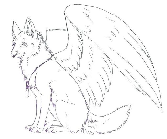 Cute Winged Wolf Coloring Pages Wolf Colors Puppy Coloring Pages Wolf Sketch