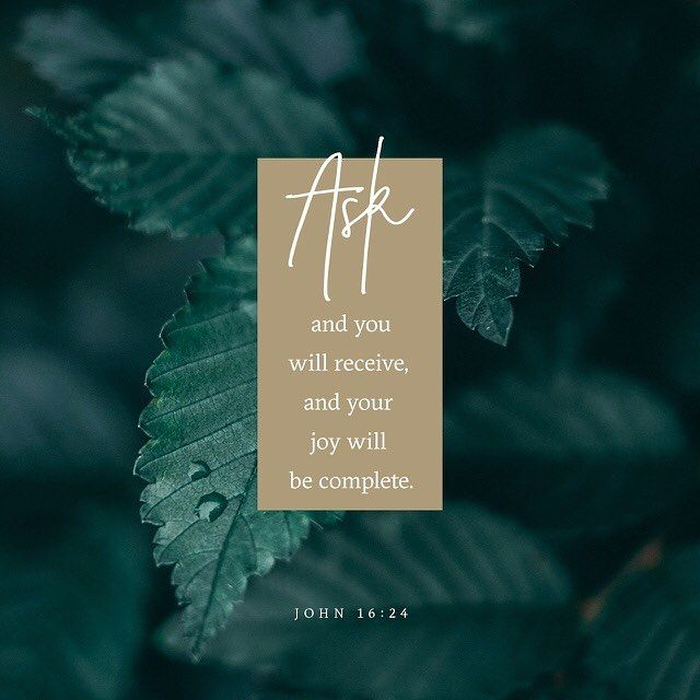 Until now you have not asked for anything in my name. Ask and you will receive and your joy will be complete. John 16:24 NIV http://ift.tt/2xrUjEC  #anything #name #ask #receive #joy #complete #bibleverse #bible #biblejournaling #biblestudy #biblequotes #bibleverses #verse #verseoftheday #verses #instagood #instadaily #instalike #photooftheday #john October 09 2017 at 07:20AM #tolivelikejesus @tolivelikejesus christian t-shirt christian t shirt Christian tee Christian apparel Christian…