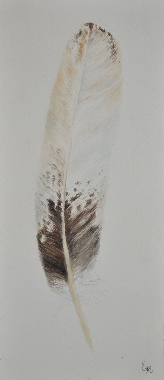 Whitetailed Sea Eagle Feather to scale  Original by EFMart on Etsy, $125.00