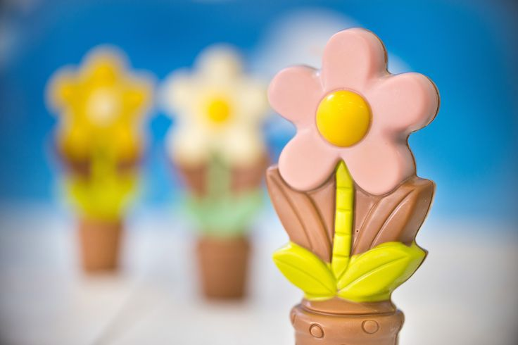#chocolate #chocolateflowers #giftsideas #chocolissimo