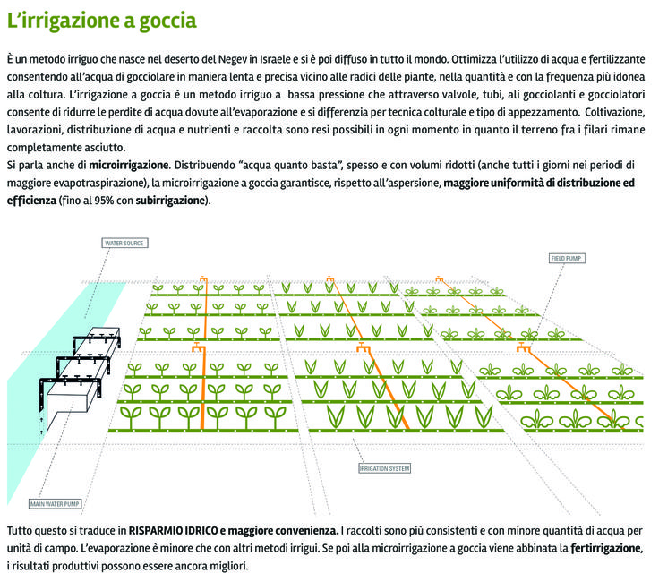 Oltre 25 fantastiche idee su irrigazione a goccia su for Temporizzatore irrigazione giardino