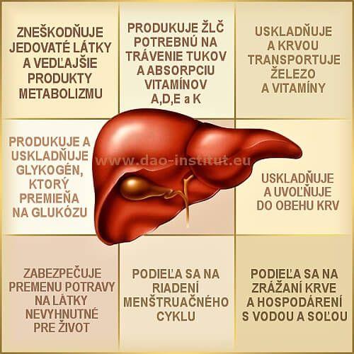 Tradičná čínska medicína (TČM): Pečeň a žlčník - I. Pečeň je najťažšie pracujúcim orgánom/žľazou vášho tela. Denne vykonáva viac ako 500 funkcií pre správny chod vášho organizmu. http://dao-fengshui.eu/podujatie/tradicna-cinska-medicina-tcm-pecen-zlcnik/