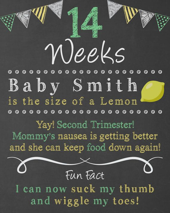 Weekly Chalkboard Pregnancy Countdown Weekly by ChalkyPrints