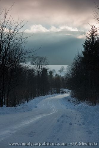 Winter road in the Bieszczady Mountains #Poland  www.simplycarpathians.com