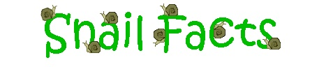 great facts about snail