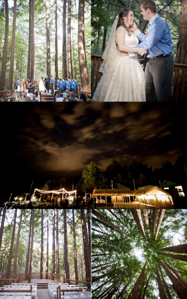 Inspiration: Weddings in the woods: Wood, Surroundings Flowers, Wedding Families