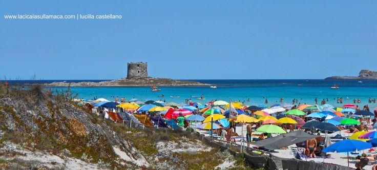 Cosa vedere in Sardegna | Stintino