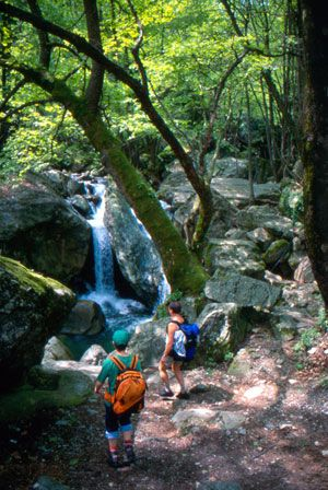Visit Greece | Outdoor Activities Pelion - Walking in nature #hiking #trekking #sports #landsports #destination #greece #nature