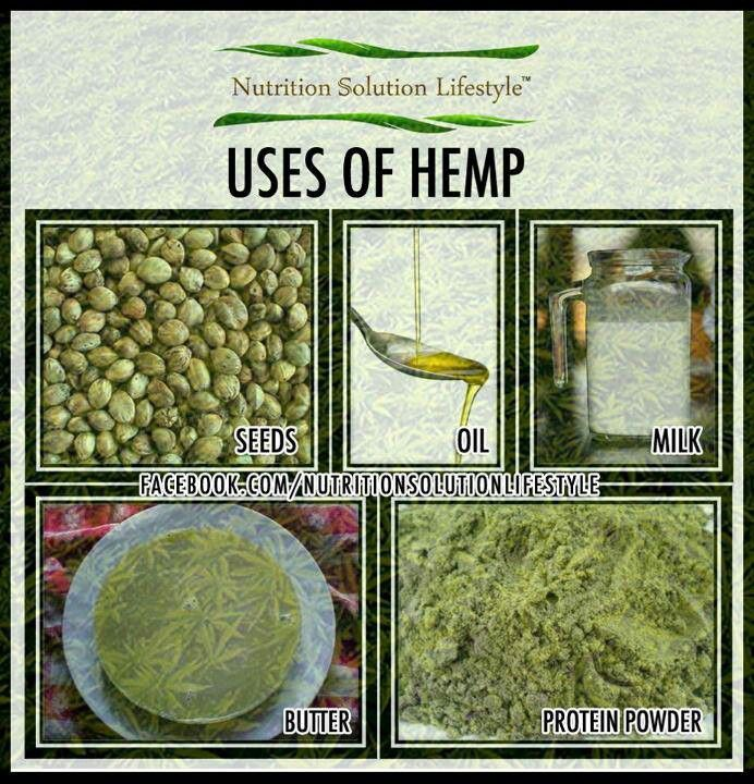 The benefits of the industrial hemp