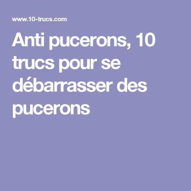 Les 20 meilleures id es de la cat gorie anti puceron - Anti puceron naturel ...