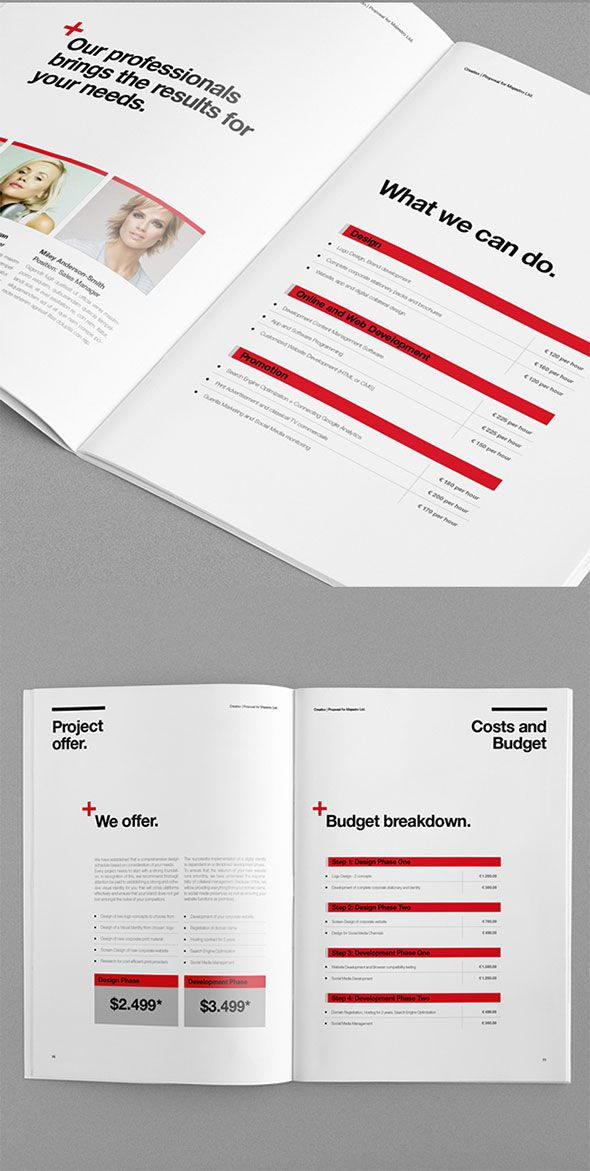 The  Best Web Design Proposal Ideas On   User