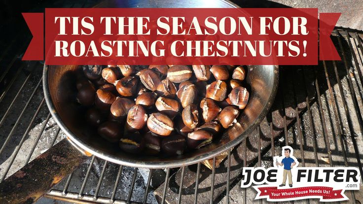 Tis the season for roasting chestnuts. We think one of the best ways to roast them is on the grill. #BBQTips  https://joefilter.com/bbq-grill-cleaning-services