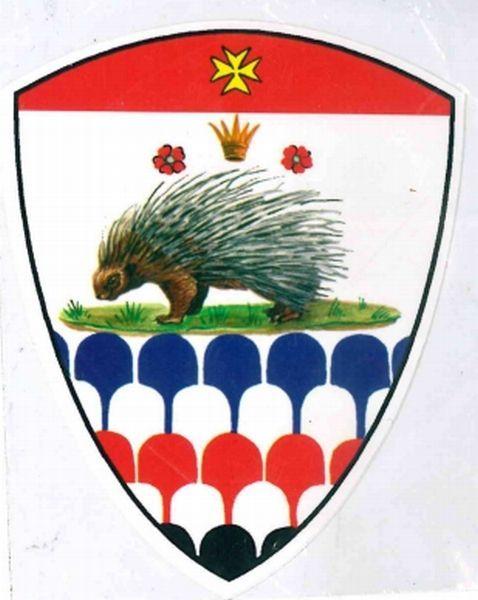 PALIO CONTRADE DI SIENA - Adesivo a forma di scudo ISTRICE