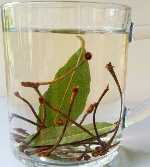 Abnehmen mit Laurel Leaf Cherry Stalk Tea