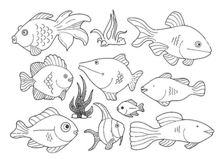 malvorlagen fisch ausmalbilder fisch kostenlos malvorlagen