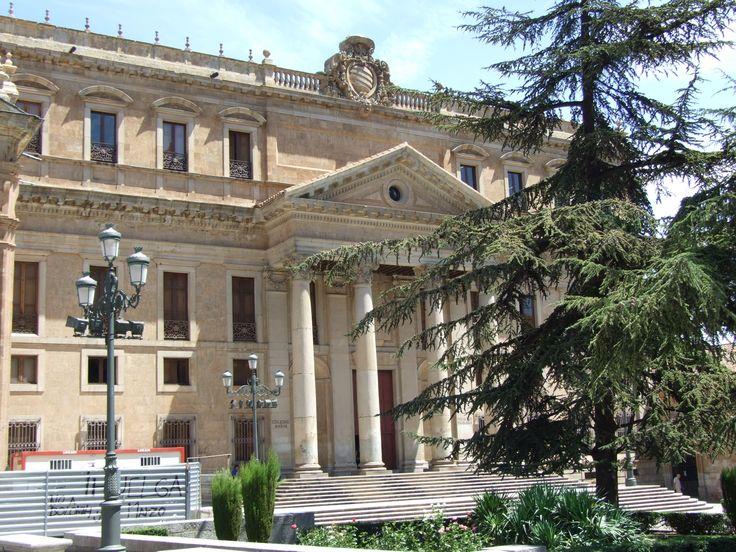 El Palacio de Anaya (Salamanca)