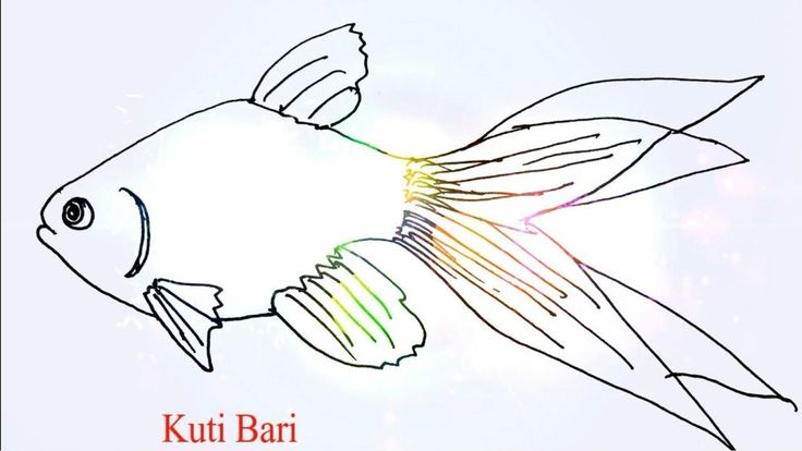 How to draw a fish// Easy Fish Drawing for Kids