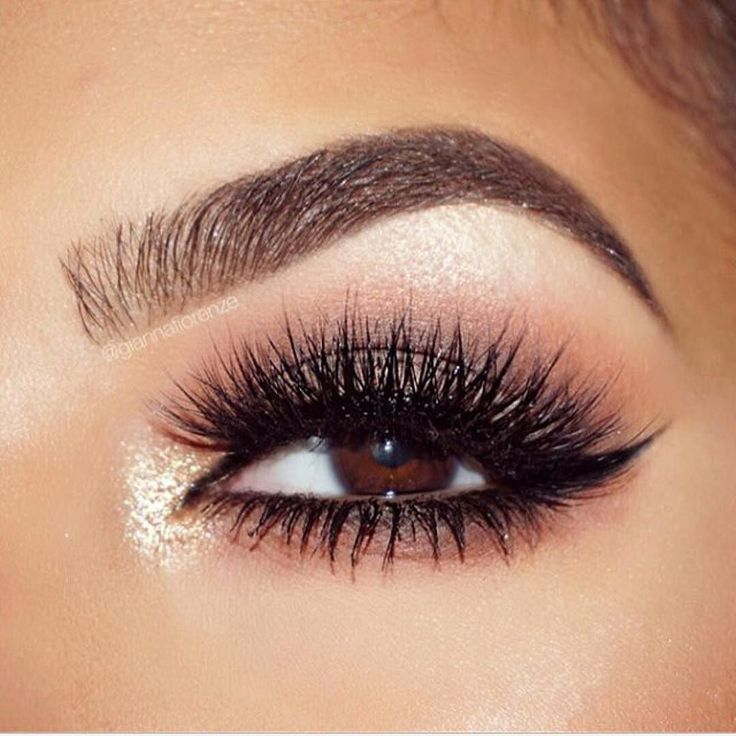 brow + lashes