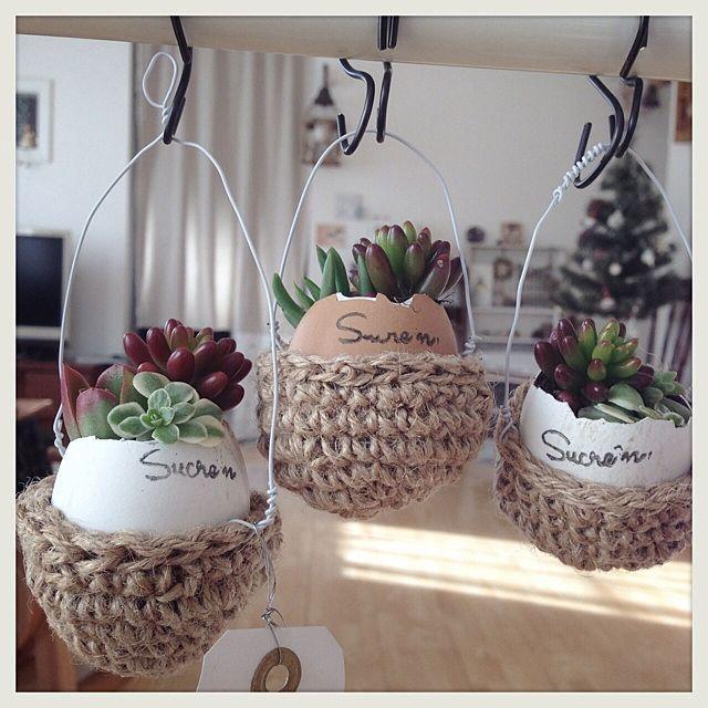 かぎ針編み/リメイク/多肉植物/ハンドメイドのインテリア実例 - 2013-12-16 20:03:19 | RoomClip(ルームクリップ)