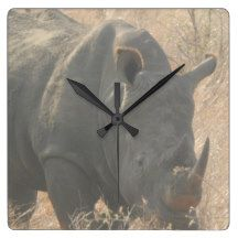 Square Wall Clock Rhino    http://artscraftsandframes.co.za/