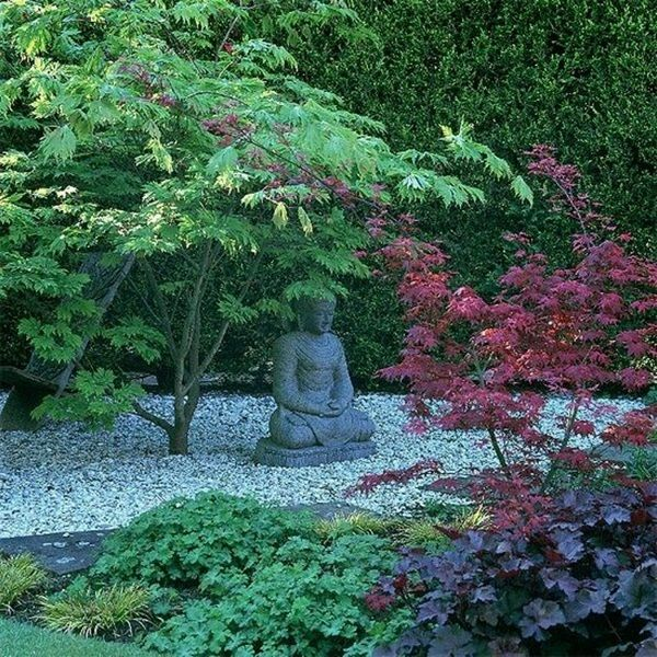 Japanese garden decorative fish exotic zen Villa
