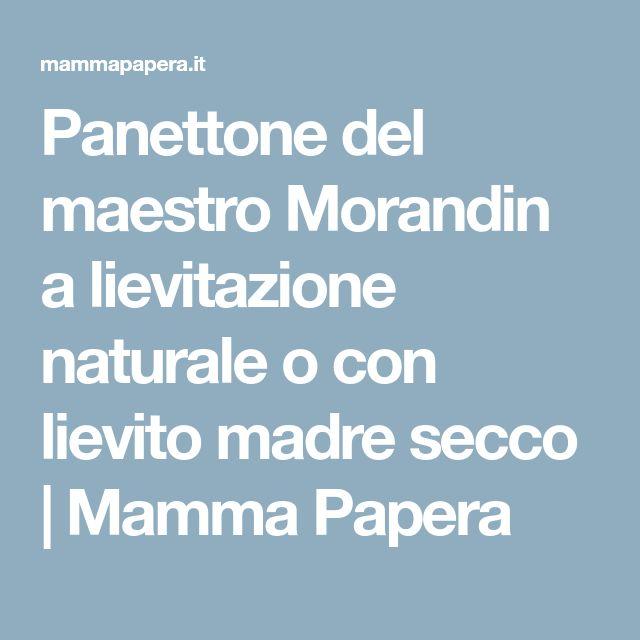 Panettone del maestro Morandin a lievitazione naturale o con lievito madre secco | Mamma Papera