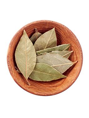 Bay leaf Exporters India  Bay leaf Exporters India – Bayleaf is an aromatic leaf that is often added to soups, gravies and rice preparations for the strong fragrance it imparts.  The bay tree is indigenous to Asia Minor, from where it spread to the Mediterranean and then to other countries with similar climates. The upper surface of the bay leaf is shiny, olive green, and lower surface is dull olive to brown. The leaf size ranges from 2.5 to 7.5 cm in length and 1.6 to 2.5 cm in breadth. The…