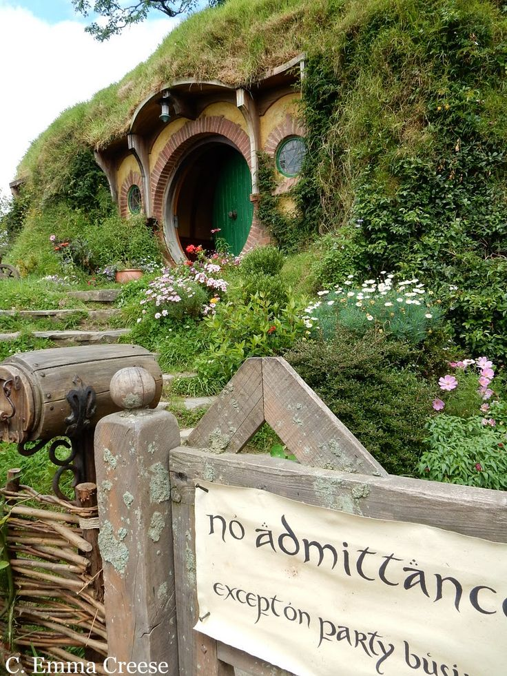 Hobbiton, the visitor gem of Middle Earth aka New Zealand. A Lord Of The Rings fan's dream. #LOTR #Hobbits #MiddleEarth #NewZealand