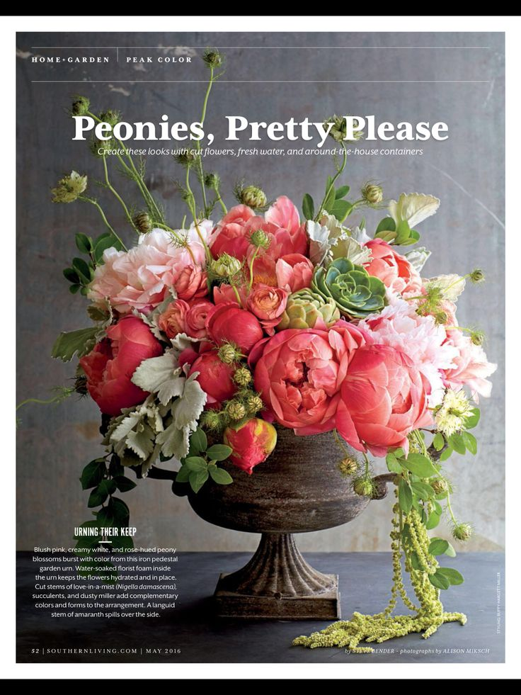 7 best Blumen images on Pinterest | Floral arrangements, Flower ...