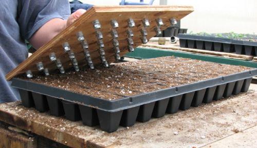 Make your own dibbler.Gardens Ideas, Greenhouses Dibbler, Gardens Tools, Gardening Tools, Greatest Gardens, Plants Seeds, Homesteads Survival, Http Thehomesteadsurvival Com, Gardens Carts