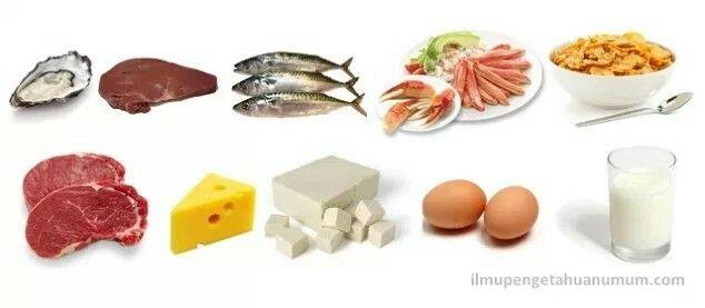 10 Makanan Yang Mengandung Vitamin B12 Kobalamin Tertinggi