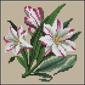 Flower lily cross stitch.