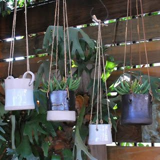ΜΙΚΡΟΚΟΣΜΟΣ: Μικροί κήποι