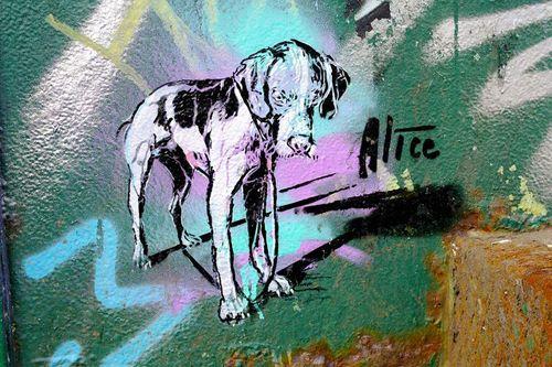 Alice Pasquini - illustrator that paints on walls, curbs etc. in public places.