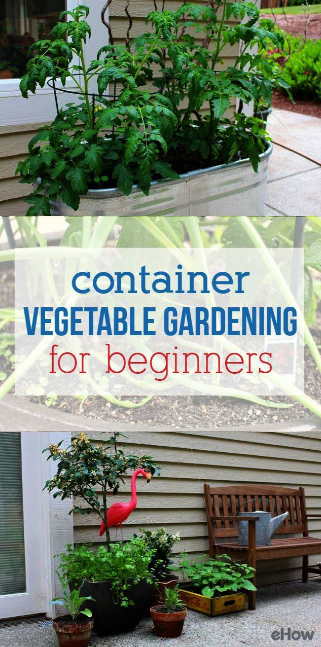 0069cff1d22eb694c282ff6969a2990a - Gardening All In One For Dummies Pdf