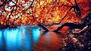 Cool Landscape by Victoria Mishina