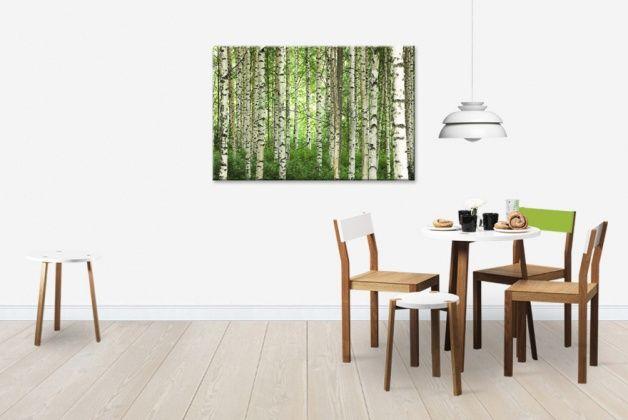 Clear Birch Forest - Tavlor på canvas - Photowall