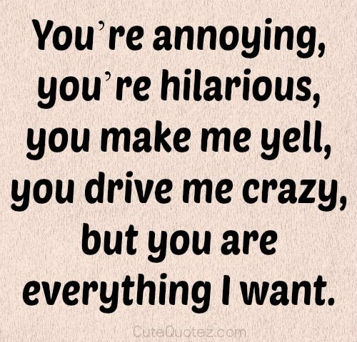Youre annoying, youre hilarious, you make me yell, you drive me ...