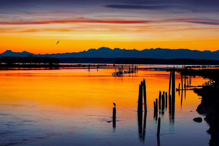 Olympic Mountains Sunrise - The Olympic Mountain Range in Washington State provides a wonderful sunrise backdrop across the waters of the Puget Sound... www.loupho.com