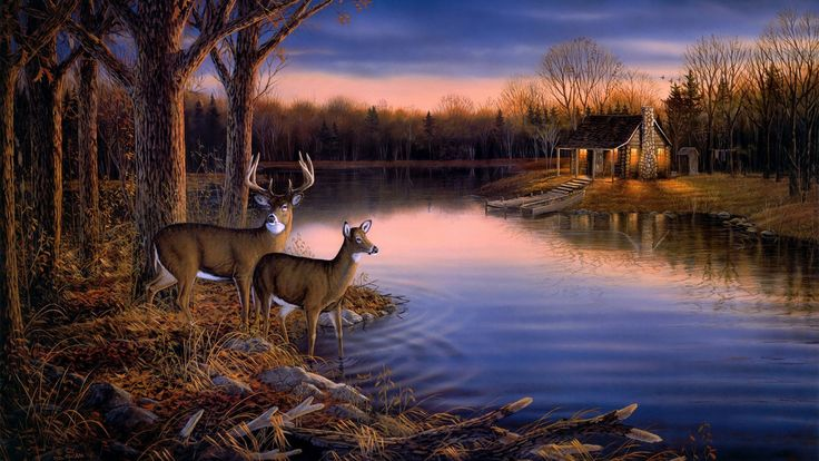 Whitetail Deer Scene painting | Painting,art widescreen ...