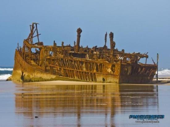 Frazer Island and we never saw a dingo : (