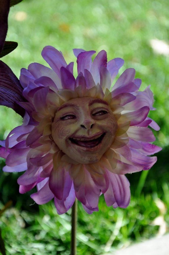 Fleurs Alice Au Pays Des Merveilles : fleurs, alice, merveilles, Alice, Merveilles, Parler, Fleurs, Série, Monsieur, Smi…, Merveilles,, Thème