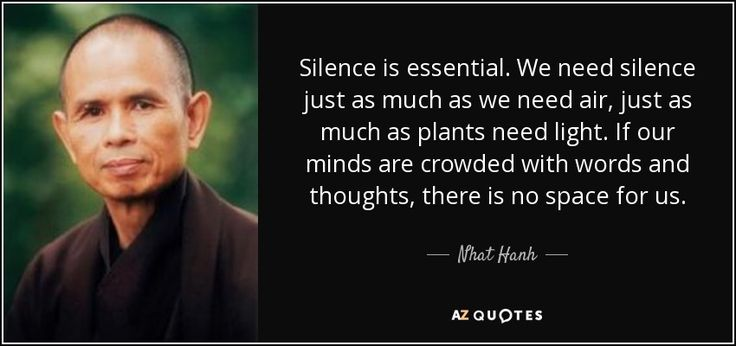 Silence is essential. We need silence just as much as we need air, just as much as plants need light. If our minds are crowded with words and thoughts, there is no space for us. - Nhat Hanh