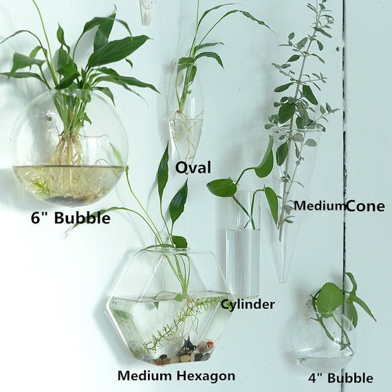 This mixed shape modern wall planters is handmade with high boron silicon glass,clear and light.It can be wall hanging with nail applied to wall