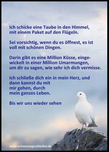 Ich schicke dir eine Taube in den Himmel, mit einem Paket auf den Flügeln. Sei vorsichtig, wenn du es öffnest, es ist voll mit schönen Dingen. Darin gibt es Millionen Küsse, einwickelt in Millionen Umarmungen, um dir zu sagen, dass ich dich vermisse. Ich schließe dich ein in mein Herz, und dann kannst du mit mir gehen, durch mein ganzes Leben. Bis wir uns wiedersehen.  :-( :'(