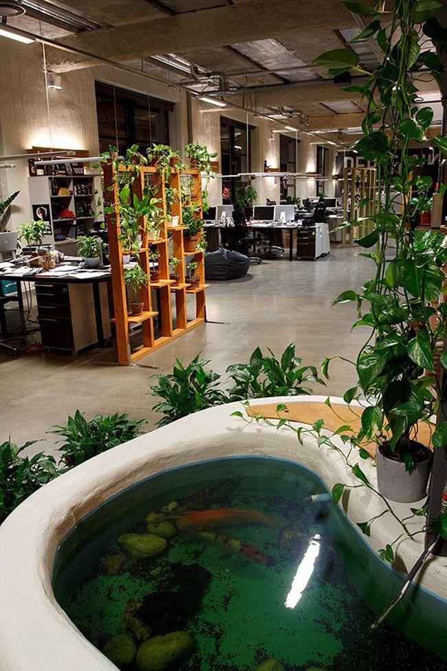 Eine Wohlfühloase im Büro mit Grünelementen und Teich