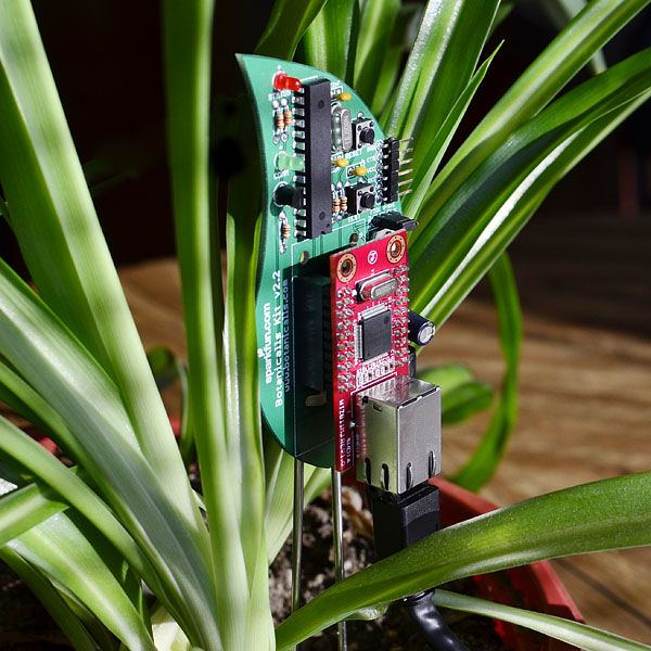 A Botanicalls Kit, which lets plants connect to Twitter and tweet as soon as they need water.